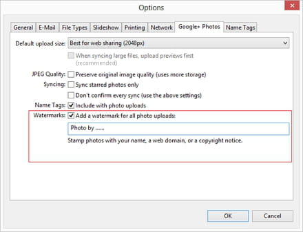 Picasa - Add a watermark to photos uploaded to Google +