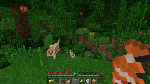 cc1a76b9a264 Download the latest version of Minecraft free in English on CCM