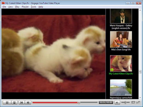 Download the latest version of YouTube Video Player free in