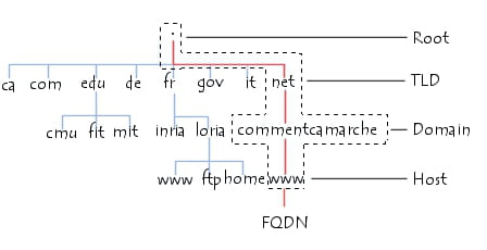 Domain Name System Tree Structure
