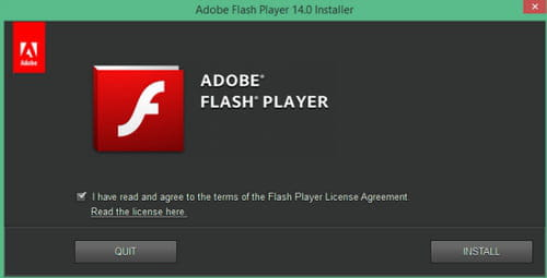 flash player exe