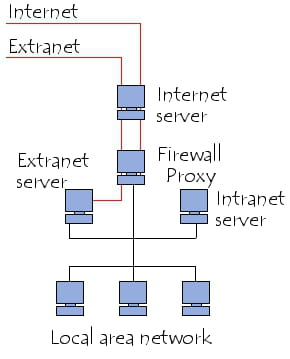 Intranet/extranet system