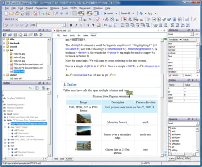 Download the latest version of oXygen XML Editor free in