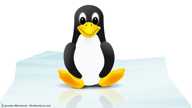 How To Read a Linux File Line by Line