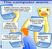 Graphic illustrating what a computer worm is and what it does