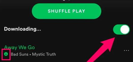 spotify offline music screenshot