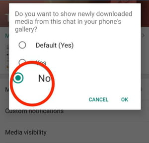 WhatsApp camera roll screenshot